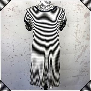 * Theory Striped Shift Dress * Casual Stretch *